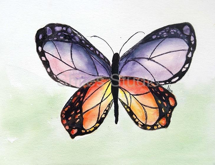 Nessas Monarch
