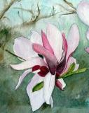 Magnolia At Londontown