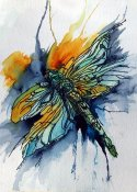 ba dragonfly