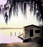 Florida Fishing Hut