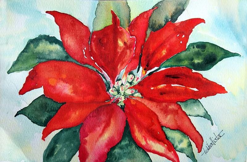 Christmas Poinsettia 2010