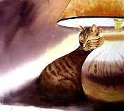 Cat By A Lamp