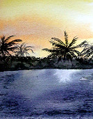 Palms Against Sunset 2