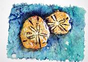 Sanddollar Batik