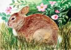 Clayboard Bunny