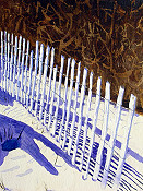 Fence Shadows At Asateague