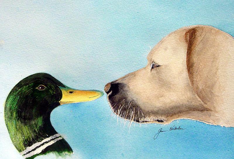 Dog Meets Duck