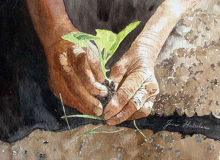 Hands Planting