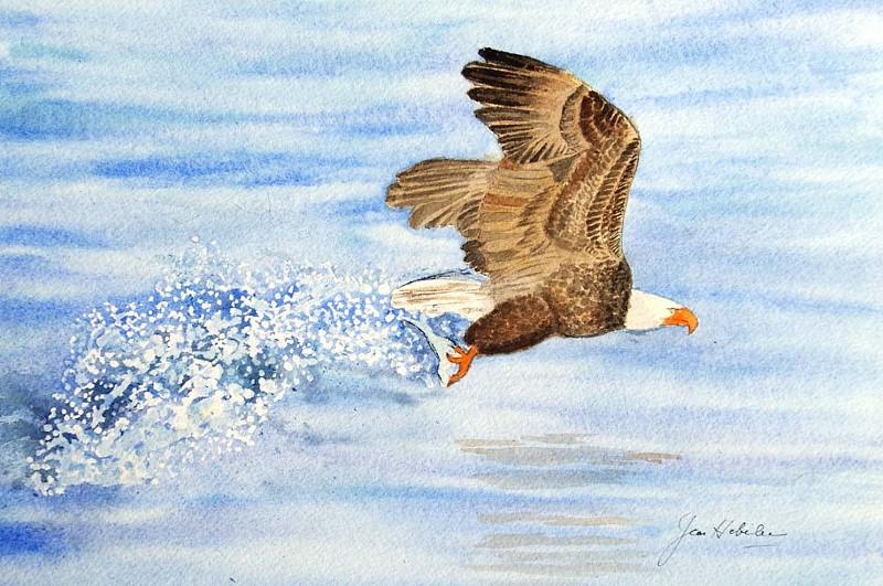 jh eagle