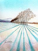 Tree Line 2