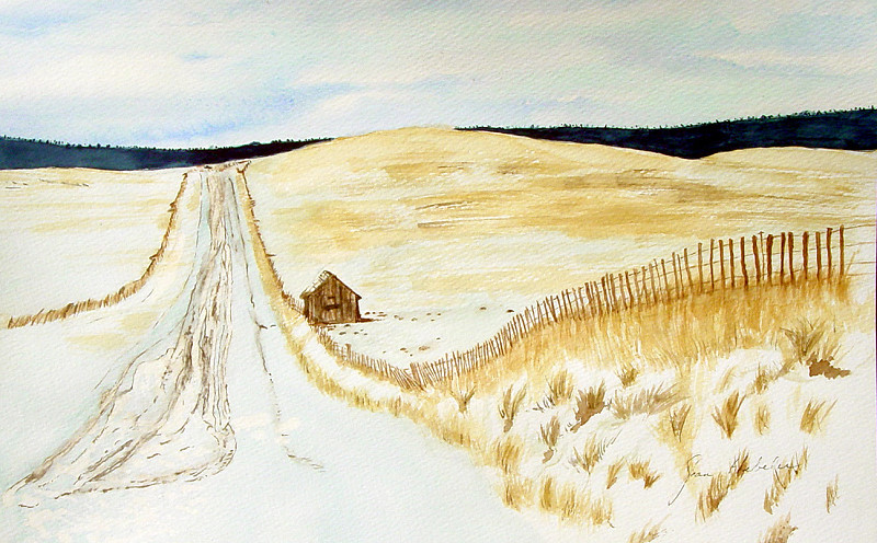 Wintery Country Road