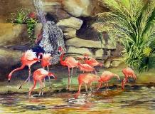 Audubon Zoo New Orleans