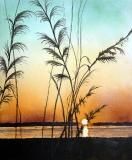 Calawassie Sunset