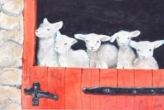Mom's Lambs