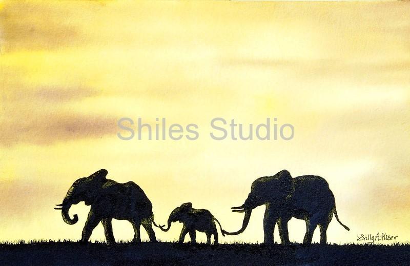 Elephant At Sunset 1