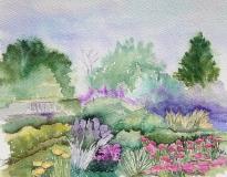 Tasmanian Garden
