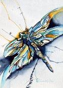 la dragonfly