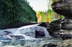 Autumn At Swallow Falls