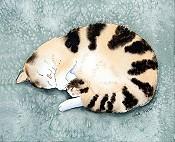 Lindas Kitty
