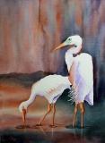 Twilight Herons