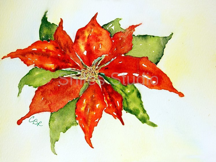 Poinsettia Fun