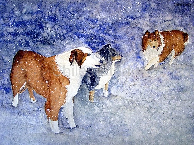 Dogs In A Snow Storm