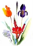 Flower Group 2