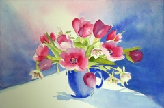 Tulip Study in Red and Blue