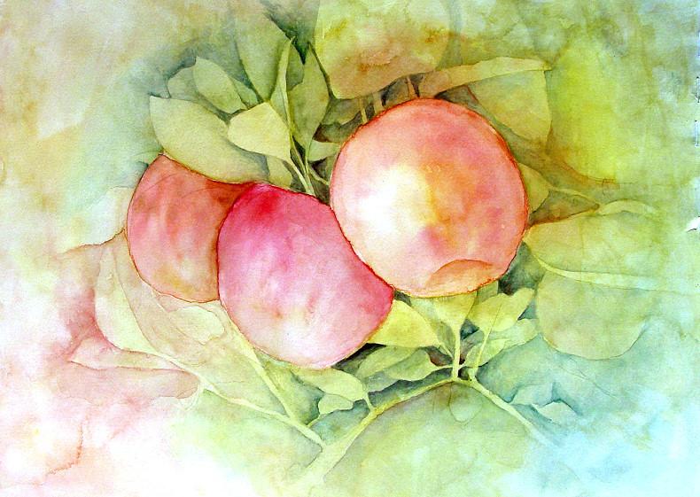 Fruit Of Fall