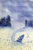 dv winter scene
