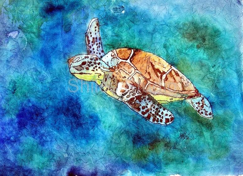 maw turtle