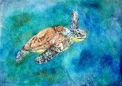 Turtle Batik
