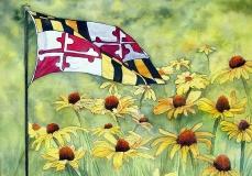 My Maryland
