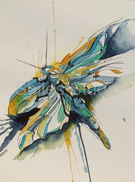 wf dragonfly
